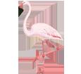 Flamingo - Fell 68