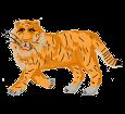 Tiger - Fell 1340000004